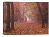 An Early Morning Stroll., Canvas Print