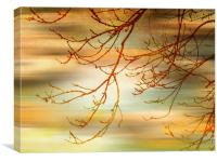 Evening Breeze., Canvas Print