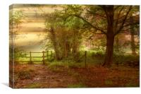 Early Morning., Canvas Print