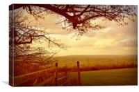 Looking  Across Blagdon., Canvas Print