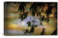 Balmy Evening., Canvas Print