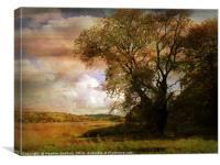 Blagdon Shoreline., Canvas Print
