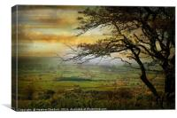 The Somerset Vale., Canvas Print