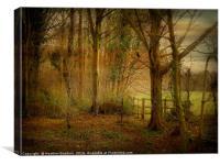 Winter Woodland., Canvas Print