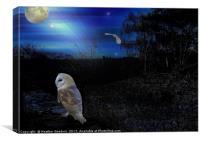 In the Night Garden., Canvas Print