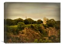 Bristol's Observatory, Canvas Print