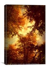 Skyline., Canvas Print