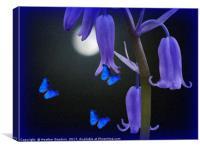 Bluebells and Butterflies, Canvas Print