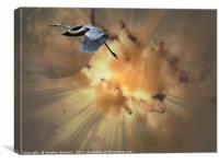 Burst of Flight, Canvas Print