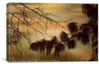 Evening Fog, Canvas Print