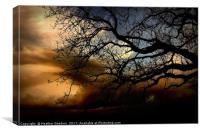 Storm Power, Canvas Print