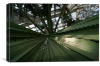 palm leaf in kew garden greenhouse, Canvas Print