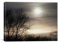 Winter Sun, Canvas Print