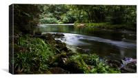 River Dart in Summer, Canvas Print