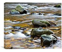 River Allen Rocks, Canvas Print