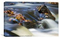 Flowing River III, Canvas Print