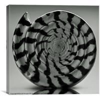 Spiral, Canvas Print