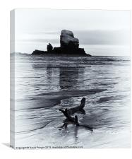 Talisker Bay, Canvas Print