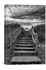 Steps To The Beach, Canvas Print