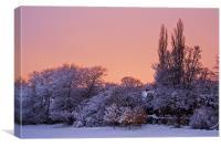 Snow Scene at Sunrise, Canvas Print