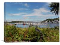 Tarbert Harbour, Canvas Print