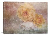 Three Roses, Canvas Print