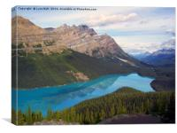 Peyto Lake Canada, Canvas Print