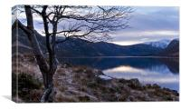 The banks of Loch Muick, Canvas Print