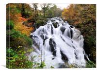Swallow Falls, North Wales, Canvas Print