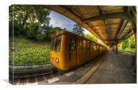 Summer eveing train.