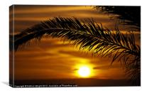 Palm sunset, Canvas Print