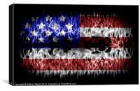 USA USA USA, Canvas Print