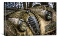 Forgotten race car, Canvas Print