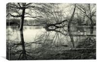 Winter Flood, River Devon, Newark