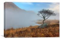 Llyn Dinas misty morning, Canvas Print