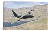 Hercules low flying in Wales, Canvas Print