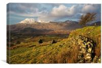 Snow on the Moelwyn, Canvas Print