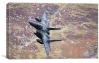 F15 - Eagle, Canvas Print
