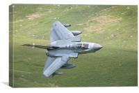 41 Squadron Tornado, Canvas Print