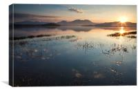 Sunrise near Ynys Gifftan, Canvas Print