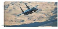 F15 - Eagle, Canvas Print