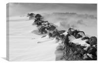 The drift, Canvas Print