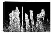 Slate fence, Canvas Print