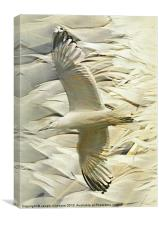 Feathers on Feathers, Canvas Print