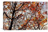Shades of Autumn, Canvas Print