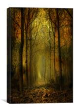 Cathedral of Trees, Canvas Print