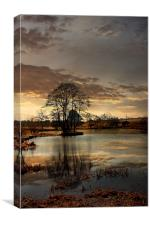The Lake, Canvas Print