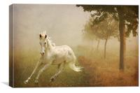 In the Mist, Canvas Print