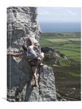 Climbing, Canvas Print