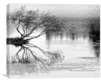 Tree Surviving on Water, Canvas Print
